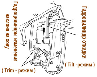 http://www.water-club.ru/images/outboards/Yamaha/Yamaha%2070BETOL/information/Yamaha%2070Binf_8.jpg