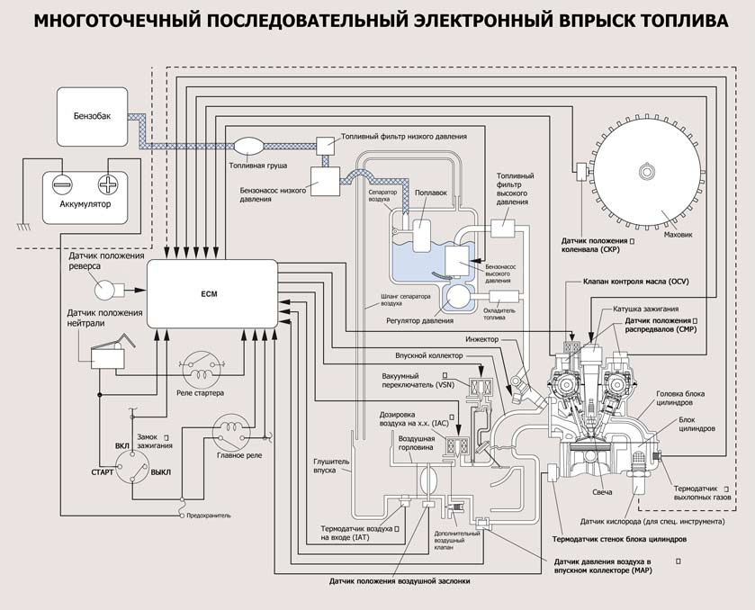 Position Sensor )